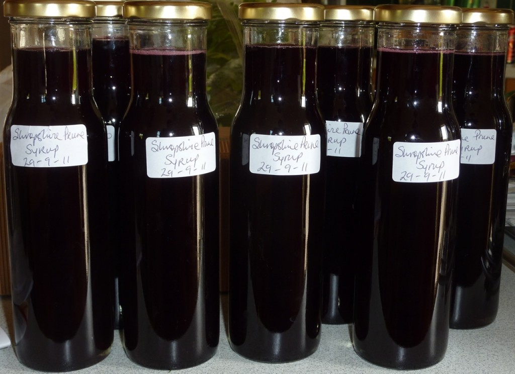 Damson Syrup Made With the Shropshire Prune Variety.